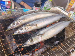 近くに魚のアップの写真・画像素材[709805]