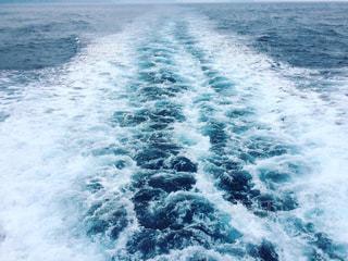 海で波に乗っている男の写真・画像素材[730259]