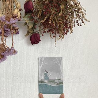 近くの花のアップの写真・画像素材[1455279]