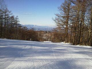 男雪の中スキー クロスカントリー - No.710594