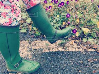 緑の葉とピンクの花と雨靴と - No.818154