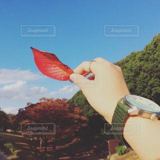 凧の飛行人の写真・画像素材[710946]