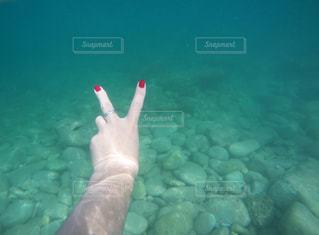 水面下を泳ぐ魚たち - No.712381