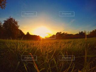 芝生のフィールドに沈む夕日 - No.716704