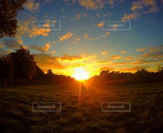 背景の夕日とツリーの写真・画像素材[716706]