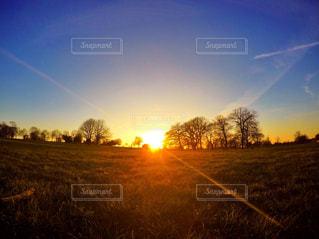 芝生のフィールドに沈む夕日の写真・画像素材[720851]