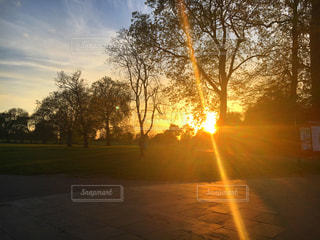 バック グラウンドで夕日を持つ男の写真・画像素材[746965]