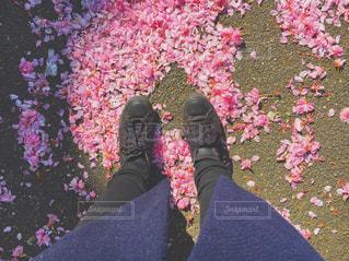 ピンクの花を身に着けている人の写真・画像素材[753997]
