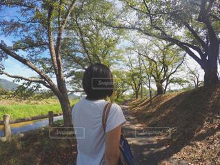木の隣に立っている男の写真・画像素材[1615266]