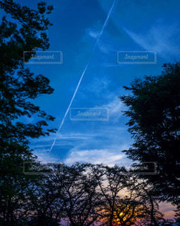 空の凧の写真・画像素材[792947]