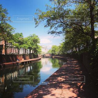 木々 に囲まれた水の体の上の橋の写真・画像素材[710920]