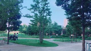 公園の人々 のグループ - No.711199