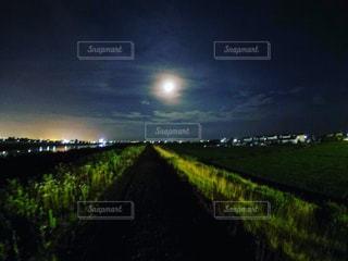 静かな夜道の写真・画像素材[711380]