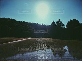 風景の写真・画像素材[511922]