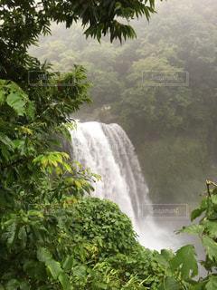音止めの滝の写真・画像素材[712446]