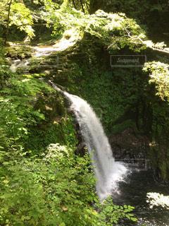 滝の流れの写真・画像素材[712561]