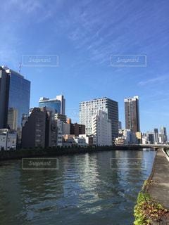 都会のオアシスの写真・画像素材[712625]
