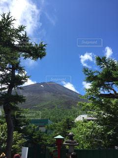 富士の夏の写真・画像素材[712628]