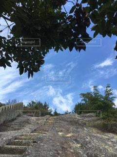 見上げた空の写真・画像素材[721421]