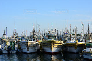 港中の小型船の写真・画像素材[732167]