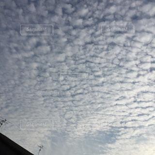 秋の空の写真・画像素材[726543]