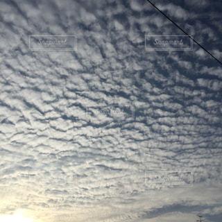 秋の空の写真・画像素材[726544]