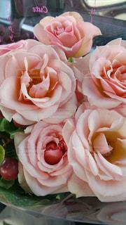 近くの花のアップの写真・画像素材[715310]