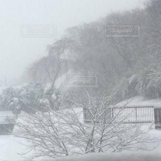雪に覆われた鉄道の写真・画像素材[723918]
