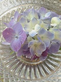 花の写真・画像素材[33551]