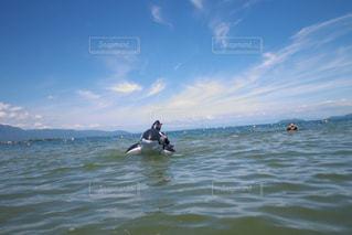 湖に浮かぶクジラの写真・画像素材[1410964]