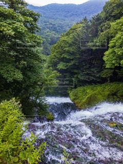 日光 湯滝の写真・画像素材[1487609]