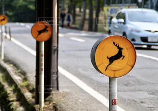 道の端の鹿に注意の標識の写真・画像素材[716399]