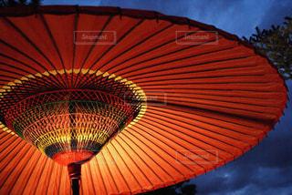 和傘のライトアップの写真・画像素材[716470]