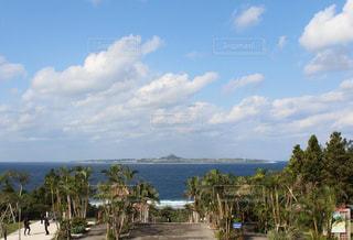 沖縄県の伊江島の写真・画像素材[721763]