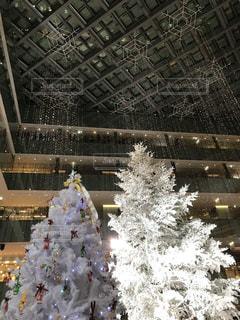 雪に覆われた建物の写真・画像素材[888242]
