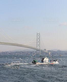 今朝のいかなご漁の写真・画像素材[894290]