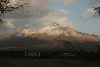 背景の山と木の写真・画像素材[919631]