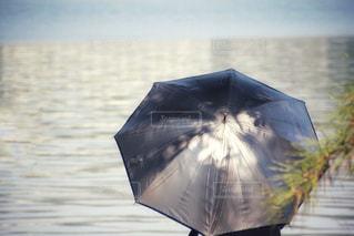 日傘をさして水面を眺めるの写真・画像素材[1161897]