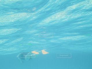 シュノーケリングをしている人とフィンの写真・画像素材[1210398]