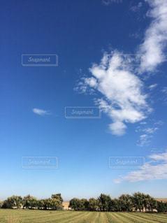 畑と空の写真・画像素材[1377896]