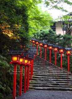 夏の貴船神社のライトアップの写真・画像素材[1377903]