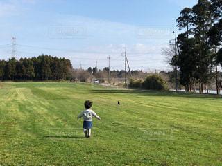 草っ原を走る子供の写真・画像素材[1716172]