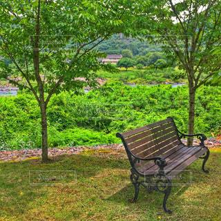 緑豊かな緑のフィールドの真ん中に座って空の公園ベンチの写真・画像素材[774539]