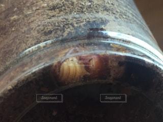 近くに鍋のアップの写真・画像素材[720397]