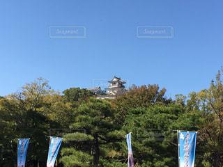 見上げる高知城 - No.722305
