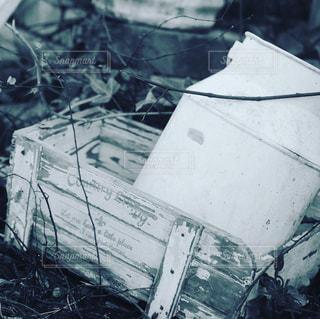 近くに雪の斜面をカバーの写真・画像素材[775397]