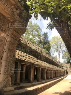 カンボジア遺跡の写真・画像素材[1802018]