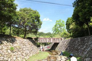 川遊びの写真・画像素材[722442]