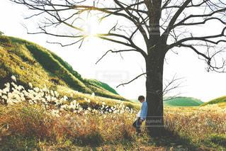 木の隣に立っている人の写真・画像素材[722322]