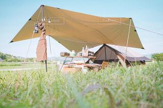 ポカポカ陽気のキャンプの写真・画像素材[3294017]